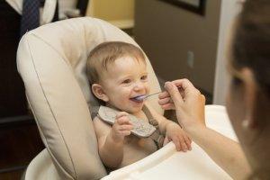 Beikost für Babys